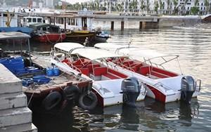 Quảng Ninh: Tạm đình chỉ hoạt động 4 tàu du lịch để kiểm tra an toàn