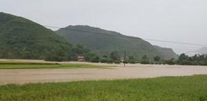Phù Yên- Sơn La: Nhiều sai phạm trong quản lý ngân sách, đất đai