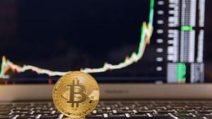 Quên mật khẩu tài khoản bitcoin, nhà đầu tư cậy nhờ thuật thôi miên