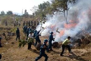 Quy định chi tiền bồi dưỡng lực lượng tham gia chữa cháy rừng