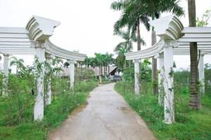 Sắp đưa vào hoạt động công viên hoa hồng lớn nhất Việt Nam
