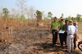Tây Ninh: 12 vụ cháy tại khu rừng phòng hộ Dầu Tiếng trong dịp Tết