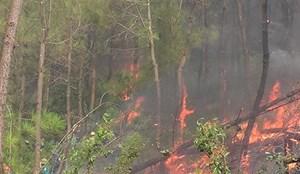 Thăm hỏi, động viên thân nhân gia đình nạn nhân vụ cháy rừng thông
