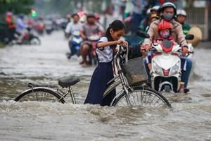 Thành phố Hồ Chí Minh: Cần giải pháp hiệu quả cho vấn đề ngập nước do triều cường