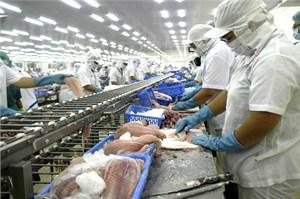 Thị trường xuất khẩu cá tra: Cần hành động hơn giải thích