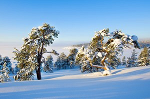 Thiên nhiên miền bắc nước Nga