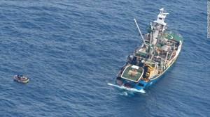 Tìm thấy 7 người sống sót trên chuyến tàu mất tích ở Thái Bình Dương