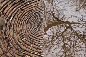 Tĩnh lại để chiêm ngưỡng những vòng tròn đá cuội tĩnh lặng