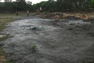Trại lợn bị phạt 50 triệu đồng do xả thải ra môi trường