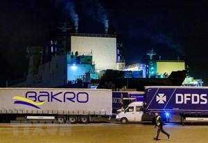 Phát hiện người di cư trong container trên tuyến phà giữa Hà Lan-Anh