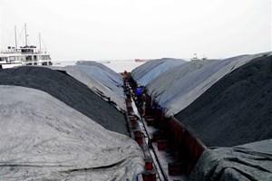 3.000 tấn than không rõ nguồn gốc bị cảnh sát biển tạm giữ