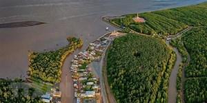 Kỷ luật hai cán bộ liên quan đến sai phạm tại Vườn Quốc gia Mũi Cà Mau
