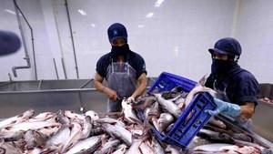 Việt Nam đủ điều kiện xuất khẩu sản phẩm cá và cá da trơn sang Hoa Kỳ