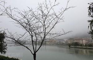 Mùng 4 Tết, Bắc Bộ và Bắc Trung Bộ có mưa nhỏ, rét đậm