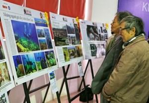'Tự do sáng tạo và sự đa dạng của các hình thức biểu đạt mỹ thuật, nhiếp ảnh ở Việt Nam'