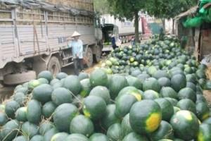 Nông sản vẫn tồn đọng tại cửa khẩu