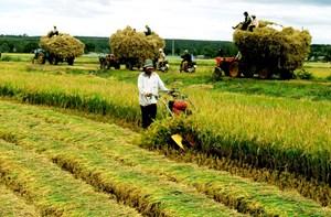 Không để nông dân loay hoay với hội nhập