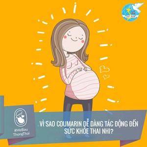 Vai trò của môi trường sống đối với sức khỏe toàn diện của bà bầu và thai nhi