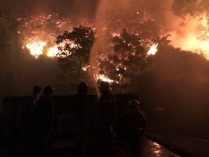 Lão nông ở Hà Tĩnh bị phạt 90 triệu đồng vì lỡ làm cháy 4.900 m2 rừng