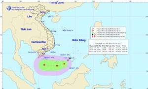 Vùng áp thấp có khả năng mạnh lên thành áp thấp nhiệt đới trong đêm nay