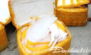 Xe khách 'tậu' thêm 434 kg thịt heo sữa thối