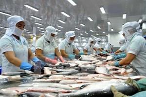 Yêu cầu Mỹ xem xét lại cách xác định thuế với cá tra, basa