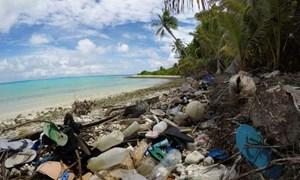 New Zealand cấm túi nhựa dùng một lần