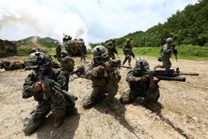 Mỹ - Hàn Quốc: Lại chuẩn bị tập trận