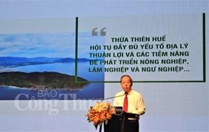 Thừa Thiên - Huế: Phát triển nông nghiệp theo hướng đặc sản