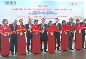 500 đại biểu tham dự hội nghị truyền máu và ghép tế bào gốc