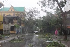 50.000 ngôi nhà ở Quảng Bình bị tốc mái