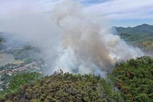 [VIDEO] Hà Tĩnh lại xẩy ra cháy rừng