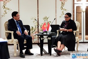 Phó Thủ tướng Phạm Bình Minh gặp gỡ Ngoại trưởng Indonesia