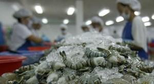 Australia nới lỏng lệnh cấm nhập khẩu tôm