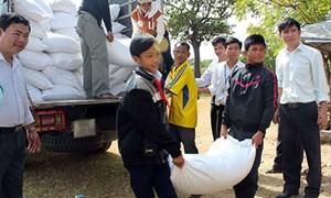 Bàn giao gạo hỗ trợ cho học sinh nghèo trước ngày 30/11