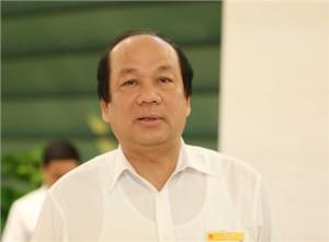 Băn khoăn tư vấn trong nước, Thủ tướng mời tư vấn độc lập