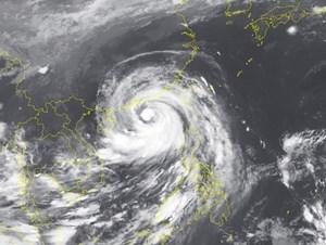 Bão số 6 gió giật cấp 17, biển động dữ dội, sóng cao 3-4 m