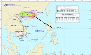 Bão số 7 đi vào đất liền Trung Quốc, Bắc Bộ có mưa lớn diện rộng