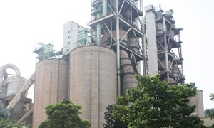 Bảo vệ môi trường -  vấn đề sống còn của doanh nghiệp
