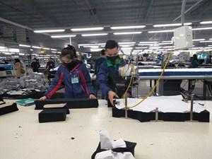 Bảo vệ quyền lợi cho người lao động: Cần giải pháp ngay từ khi doanh nghiệp có dấu hiệu phá sản