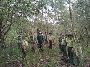 Bảo vệ rừng phòng hộ ven biển