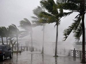 Yêu cầu các bộ ngành, địa phương chủ động ứng phó với bão số 2
