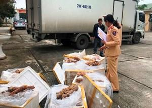 Bắt giữ 2 vụ vận chuyển thực phẩm bẩn tại Thanh Hoá