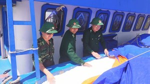 Bắt giữ sà lan chở gần 500 tấn phân bón không rõ nguồn gốc