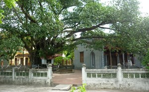Bên cây đa lịch sử