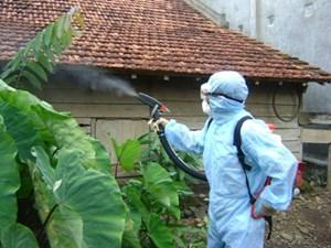 Bệnh bạch hầu dễ lây lan và biến chứng nguy hiểm