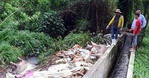Bị phạt gần 300 triệu đồng vì xả thải ra sông Sài Gòn