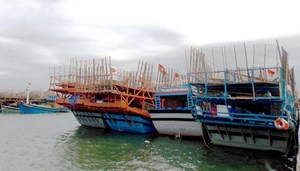 Biển động, hàng ngàn tàu cá gác bến