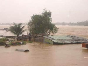 Bộ Văn hóa Thể thao và Du lịch ủng hộ đồng bào lũ lụt