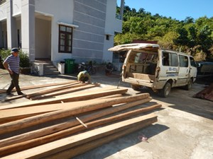 Bỏ xe cũ chở 1,5 khối gỗ táu khi gặp kiểm lâm